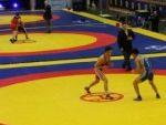 Сборные Армении на чемпионате Европы по борьбе
