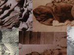 Необходимо заставить Турцию признать Геноцид армян