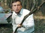 «Если Азербайджан рухнет»: О чем предупреждает Саакашвили Алиева