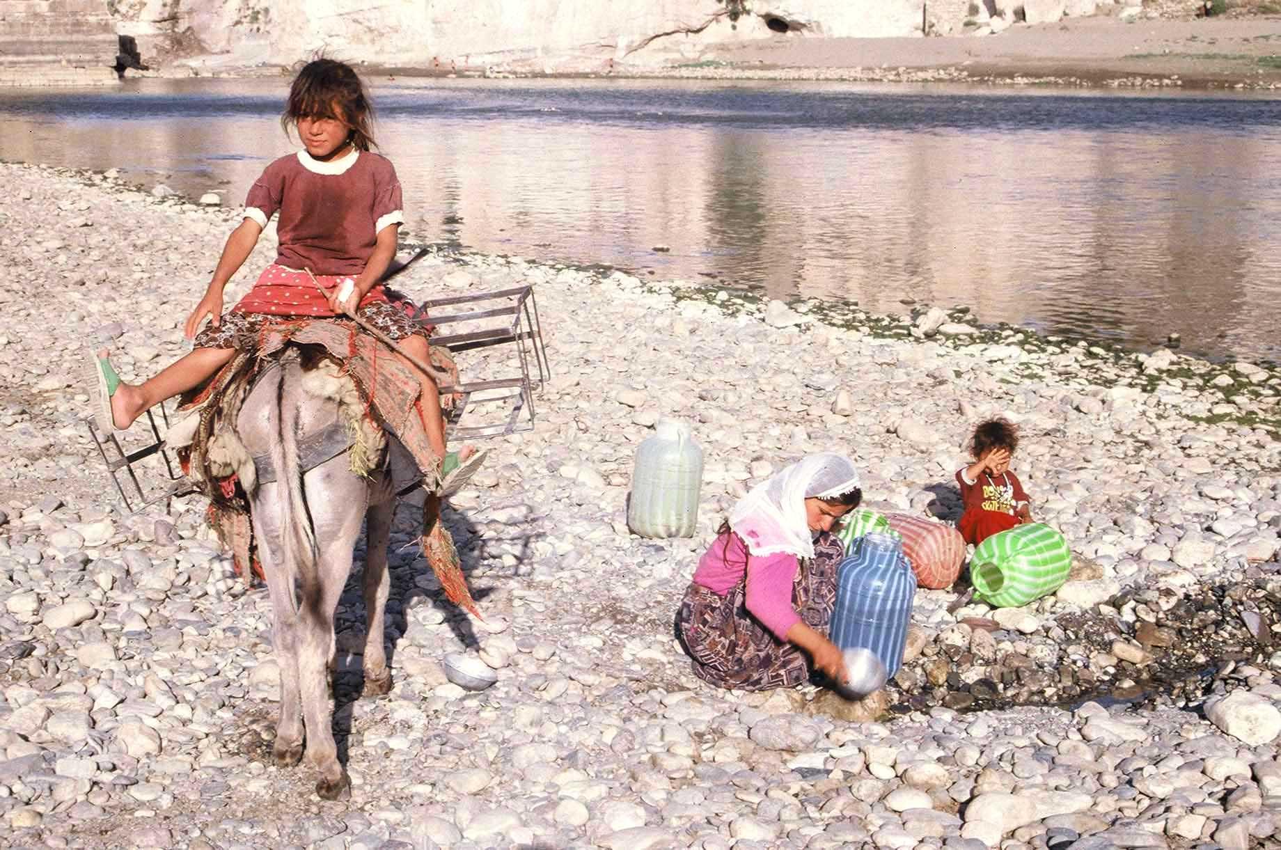 Сабака йибат девчка таджикистан 21 фотография