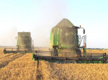 Изменение климата в Азербайджане повлияет на урожайность целого ряда сельскохозяйственных культур